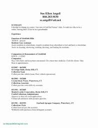 Sample Federal Resume New 25 New Federal Resume Samples Resume