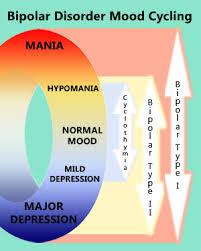Bipolar Cycle Chart Interesting The Bipolar Journals