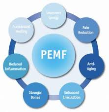 Pemf Machines Pulsed Electromagnetic Field Therapy Devices