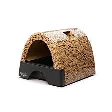 1 cat litter box