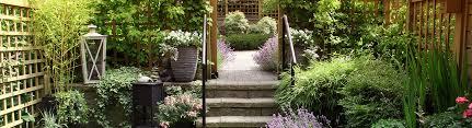 five ways to use trellis in your garden