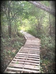 interior building pallet path diy for the home marvellous wooden garden walkway walkways ideas gate