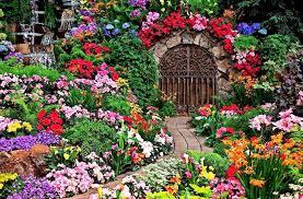 color garden. Garden Gate Color N