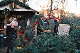Top Places To Buy Your Christmas Tree And Decorations Around When Should You Buy A Christmas Tree