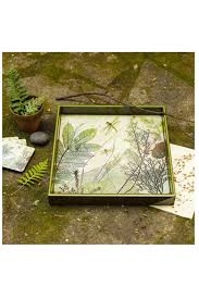 Rock Paper Flower Trays Rock Flower Paper Square Dragonfly Tray From Massachusetts By Crafty