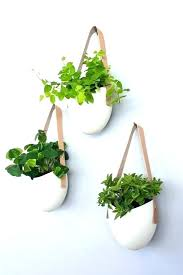 wall mounted plant holders modern wall mounted plant holders to decorate bare walls regarding wall plant wall mounted plant