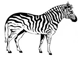 Small Picture Zebra coloring page Animals Town Free Zebra color sheet