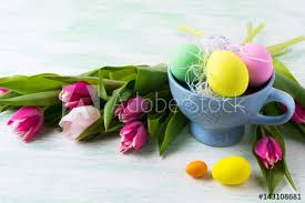 Easter Purple Pink Green Yellow Eggs In Blue Cup And Pink Tulips