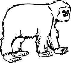 Kleine Gorilla Kleurplaat Gratis Kleurplaten Printen