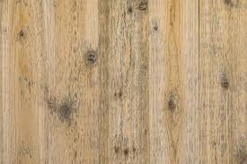 black mold on wood