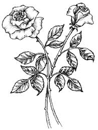 Small Picture How to Draw a Rose HowStuffWorks