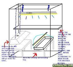 basement grow room design. Bedroom Grow Room Design Home Decoration Live Basement
