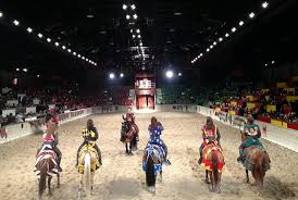 10 Things To Know Before Going To Medieval Times Chicago