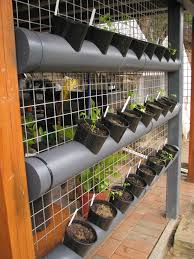 vertical garden using pipe ordinary extraordinary hydroponic spinach pvc design diy plans gardening systems designs vegetable