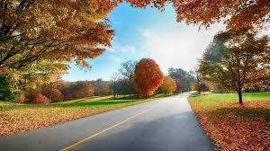 hd nature backgrounds 1080p. Plain 1080p Download 1080p Wallpaper HD Free Throughout Hd Nature Backgrounds E