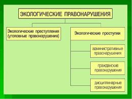 Экологические преступления их понятие и характеристика Экологические преступления понятие и виды курсовая работа