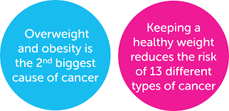 Image result for obesity causes cancers