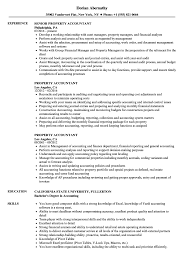 Report Accountants Template Property Accountant Resume Samples