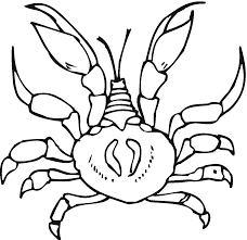 Crab Printable Coloring Pages free printable crab coloring pages for kids on easy crab coutout templates