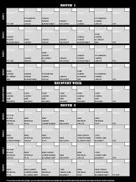 insanity schedule just completed plyometric cardio circuit