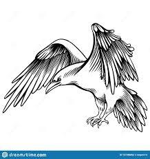 иллюстрация вектора вороны сделанный эскиз к маленький ворон