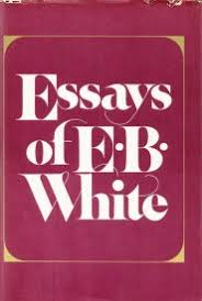 e b white on the art of the essay and why egotism is essential  the question of what makes a great essay is an inexhaustible source of fascination and there is hardly a greater master virtuoso at it than e b white