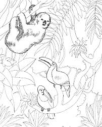 Free download 40 best quality printable zoo animals coloring pages at getdrawings. Free Printable Zoo Coloring Pages For Kids