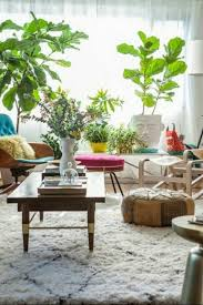 Inspiring Living Room Ideas With Plants Living Room Plant
