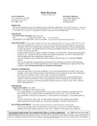 Limited Work Experience Template And Resume Examples