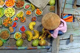 Картинки по запросу фрукты вьетнама