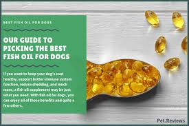 Fish Oil Dosage Chart Dog 8 Best Fish Oil For Dogs Supplements Treats And Liquid Oils