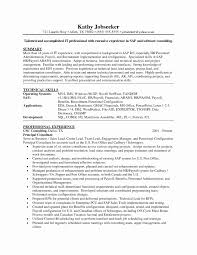 Delighted Sap Experience Resume Gallery Example Resume Ideas