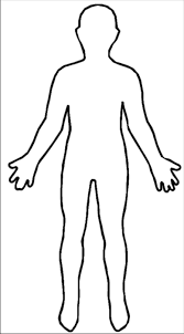 Image result for human body drawing