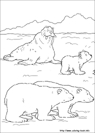 Small Picture Polar Bear Printable Templates Coloring Pages Firstpalette Com