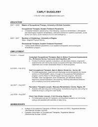School Based Occupational Therapy Resume Sample Creative Brilliant
