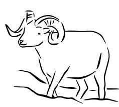 Small Picture Sheep coloring pages Free Coloring Pages
