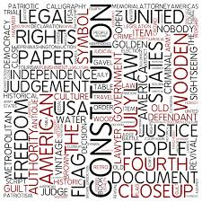 essay on the main features of the constitution of constitution