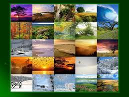 Разрушение природной среды Презентация Экология sliderpoint Перейти