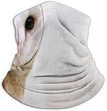 Common Barn Owl Tyto Alba Parks Outdoor Fashion Face Mask Bandanas Sports &  Casual Headwear Seamless Neck Gaiter, Headwear, Balaclava, Helmet Liner at  Amazon Men's Clothing store