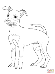 Dachshund With Puppies Coloring Page Free Printable Pages Inside