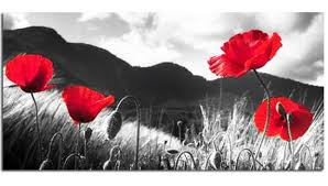 l est we forget poppies canvas wall art picture 40 inch 102 cm  on poppy wall art uk with l est we forget poppies canvas wall art picture 40 inch 102 cm