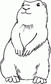 Prairie Dog Sketch Coloring Pages Print Coloring