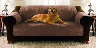 sofa pet covers. Contemporary Sofa Protect Your Furniture With These Elegant Pet Covers Every  Intended Sofa Pet Covers S
