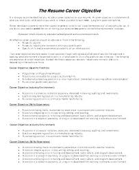 Job Objectives Sample For Resume