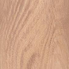 elmwood wood. english elm elmwood wood i