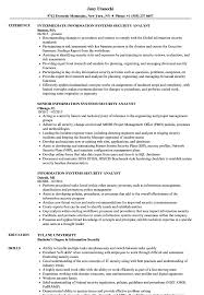 Information Systems Security Analyst Resume Sample Senior Architect