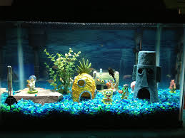 Aquarium Decoration Basics decorating aquariums