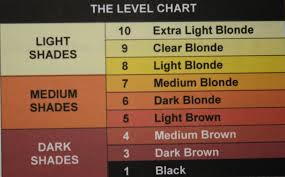 Icc Color Chart The International Hair Colour Chart Back2myroots