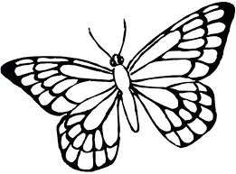 Coloring Pages For Kids Animals Online Toddlers Summer Butterfly