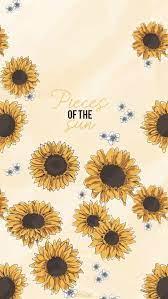 Lock Screen Cute Wallpapers Sunflowers